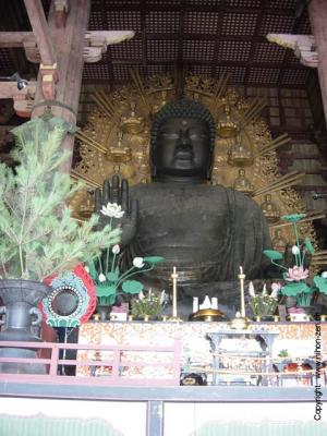 20070330235847-1432-grand-boudha-du-temple-todaiji.jpg