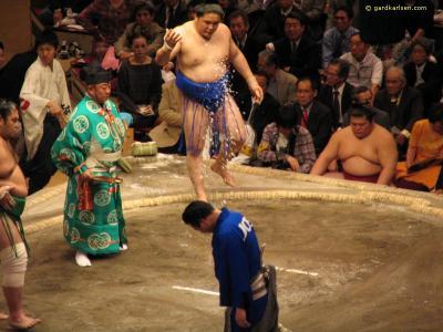 Sumo y otras artes marciales