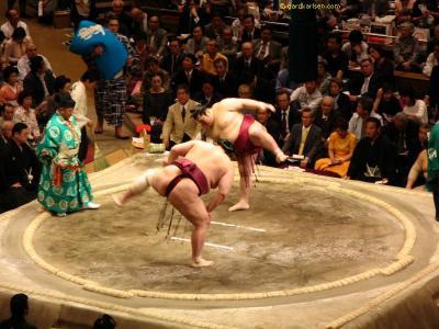 Ritual y combate de Sumo