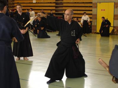 Curso de Sui o Ryu (Toulouse)